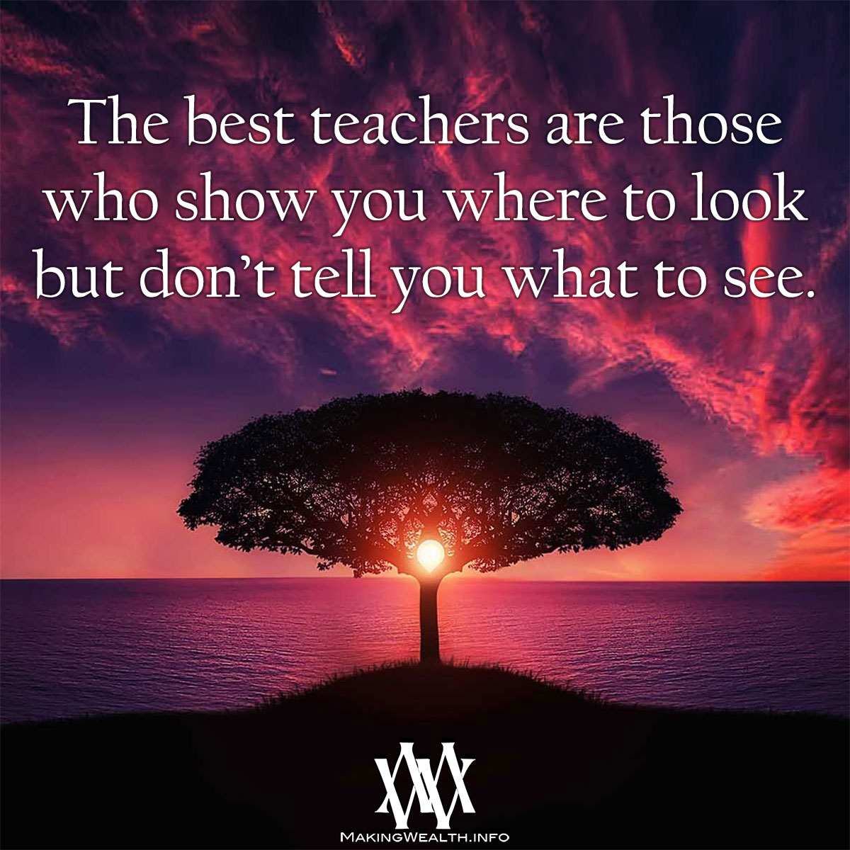 The Best Teachers Are Those Who Show You Where To Look