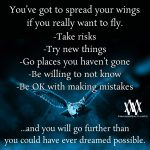 You've Got To Spread Your Wings If You Really Want To Fly